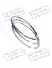 Поршневые кольца 04179446